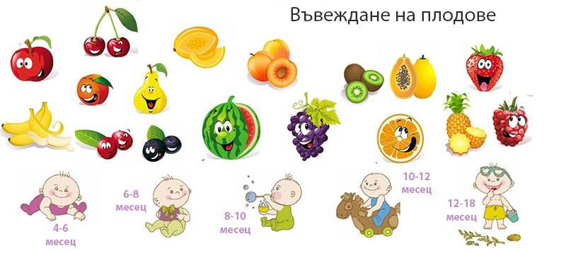 4 дневното правило - въвеждане на плодове