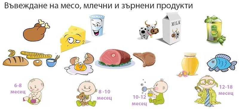4 дневното правило - въвеждане на месо и млечни продукти