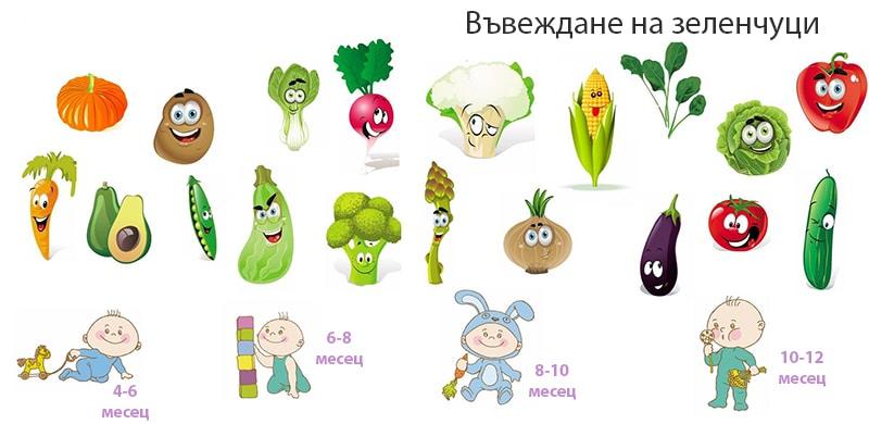 4 дневното правило - въвеждане на зеленчуци
