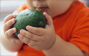 Домашно приготвени зеленчукови пюрета за бебе - Авокадо