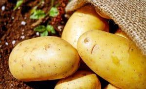 Домашно приготвени зеленчукови пюрета за бебе - картофи