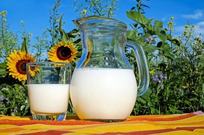 Органичното соево адаптирано мляко